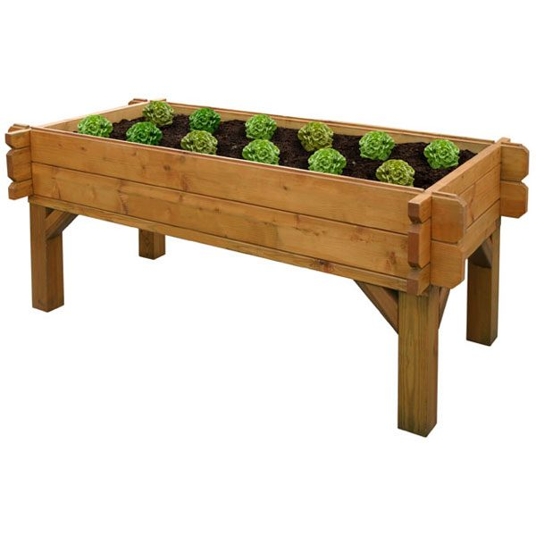 Raised-Veggie-Box