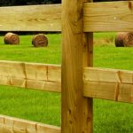 Chunky_Fencing_3